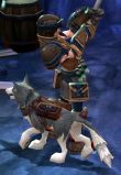 torchlight-pet1.jpg